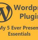 5 essential WordPress plugins for your website